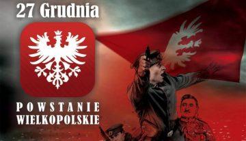 Hołd Powstańcom Wielkopolskim 1918 / 19 – wyniki